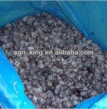 Freeze Blueberry Freezing Fresh Fruit