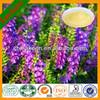 100% natural Radix Scutellariae/wogonin/30%~98% Baicalin