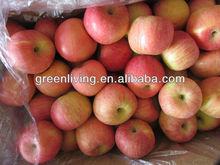 mela frutta fresca per la vendita di porcellana mela fuji frutta