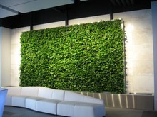 new century environmental protection clay soil, living wall planters
