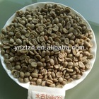 coffee bean in Arabica Coffee Beans