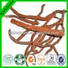 100% Natural Radix Salviae Miltiorrhizae P.E./High Quality Radix Salviae Miltiorrhizae P.e.