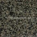 China green granite para venda