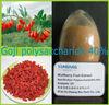 Factory sale gojiberry Extract , Goji polysaccharide powder
