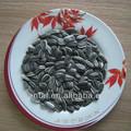 chinês sementes de girassol pretas nomes de alimentos