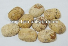 Gemstone picture jasper cushion cabochon jewelry beads