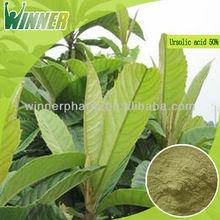Direct manufacturer supply high quality Loquat leaf extract/ursolic acid 50% ursolic acid , CAS: 77-52-1,Free sample