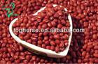 Adzuki dry small red beans China Dalian Junsheng sale