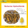 natural y pura de berberina clorhidrato de polvo extracto