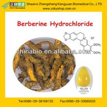 Coptis Chinensis Extract/Berberine Hydrochloride