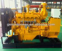 80kva to 700kva Gas Biomass Power Generation Plant