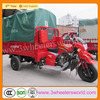 China new design motorized 3 wheel motor car,3 wheel motorbike,scooter 3 wheel trike
