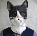 Eco friendly adorável Vivid picareta TED borracha Cat máscara para cosplay