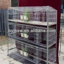 Rabbit Farming Cages In Kenya