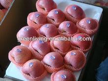 sweet crisp qinguan apple fruit brand (apple:fuji, huaniu, gala, golden,qingguan, red star)