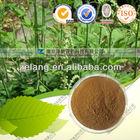 High Quality Triterpenoid Saponis 2.5%, 5%, 8%