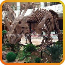 Dinosaur Fossil Manufacturer Dinosaur Skeleton Model For Sale