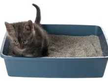cat litter pellets, give you a clean room in the city