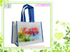 Cute laminated handled pp promotional nonwoven bag 2014