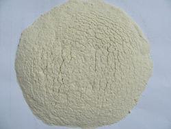 dry natural garlic powder