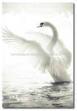 60x90cm white swan painting for living room