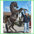 Life size garden bronze horse statue BASN-M70
