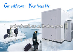 Cold torage container