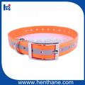 Forte sangle en nylon enduit tpu. efficace pour animaux de compagnie colliers de chien d'approvisionnement pour les magasins