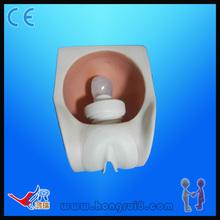 Advanced Female Condom Practice Model, female contraception