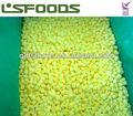 orgánico congelado iqf piña