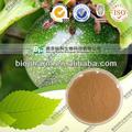 Ácido oleico / pasiflora extraer