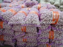 2013 best price fresh natural garlic for sale