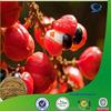 guarana powder, guarana seeds powder, guarana seed p.e
