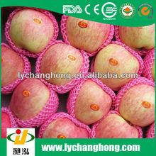 factory directly supply high quality fuji fresh apple