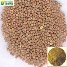 100% Pure Radish Seed extract 10:1 Raphanus sativus L.