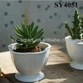 3.8 polegadas panela mini cactus