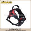 Design special likable pet harness
