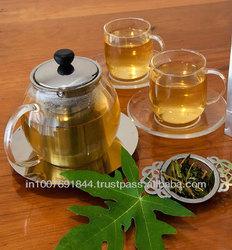 Organic Papaya Leaf Tea