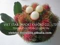 vietnam frutas tropicais