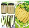 top quality canned young corn whole in tin /in glass jar