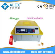 DIY egg incubator peacock hatching eggs for sale 48 eggs incubator AI-48 in promotion