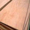 CE qualified WBP glue poplar plywood door skin