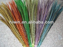 Dyed Ladies' Amherst Pheasant feather Tails