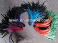 teñido de dos colores de plumas de gallo