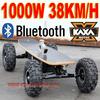 Electric Skate 1000W