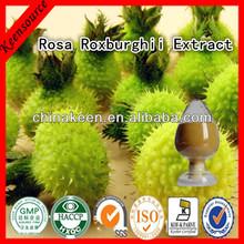 Factory Supply Rosa Roxburghii Extract /Roxburgh rose Extract /Vitamin C 3%,5%,7%,17%