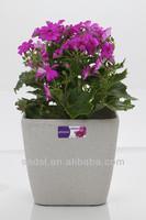 sand surface plant pot,cheap plastic flower pot,square flower pot