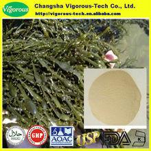 Ascophyllum nodosum polvere/ascophyllum nodosum estratto 10 1