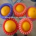 mousse de fruits protection sac de maille
