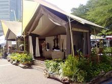 The Savannah Tent
